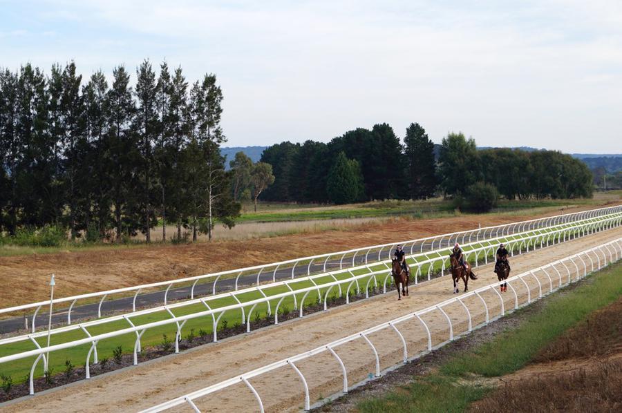 Reitboden Rennstrecke Hersteller Bacher Products Boden Pferde